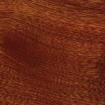 Photo of sapele sample